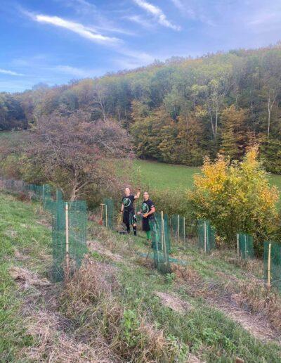 United Kiltrunners pflanzen Bäume