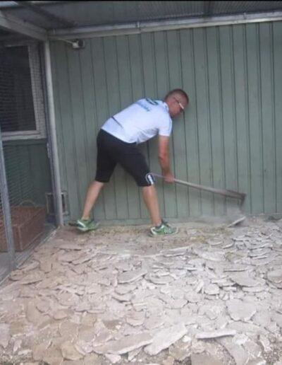 Mithilfe im Tierheim Fürth